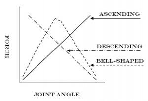 jointangle